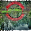 "May 3, 2012 - ""Full Circle""<br /> <br /> found in the Asian American Garden at Bellingrath Gardens in Alabama."