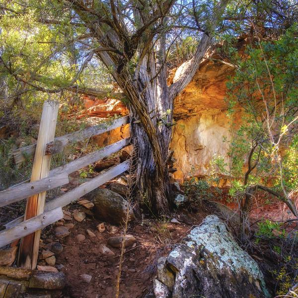 Allens Bend Trail