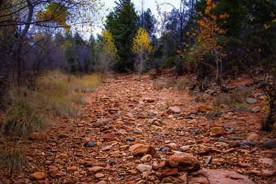 Crossing Dry Creek