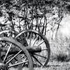 Forgotten Canons