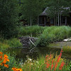 """Cabin By Beaver Dam""<br /> <br /> This non-creatively entitled scene is actually in the Betty Ford Alpine Gardens in Vail, Colorado. This is the cabin where the garden volunteers meet to start their work assignments.<br /> <br /> The pond is also part of the headwaters for a sequence of water falls."