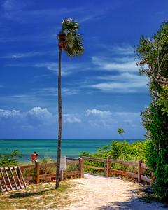 Iconic Florida Keys