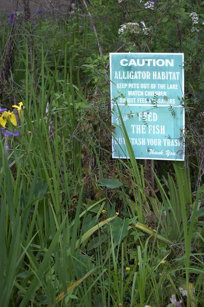 """""""Cypress Lake on the Unniversity of Lousiana Lafayette Campus"""""""