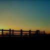 """""""Sunrise Crossing"""""""