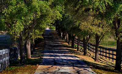 North Texas Road