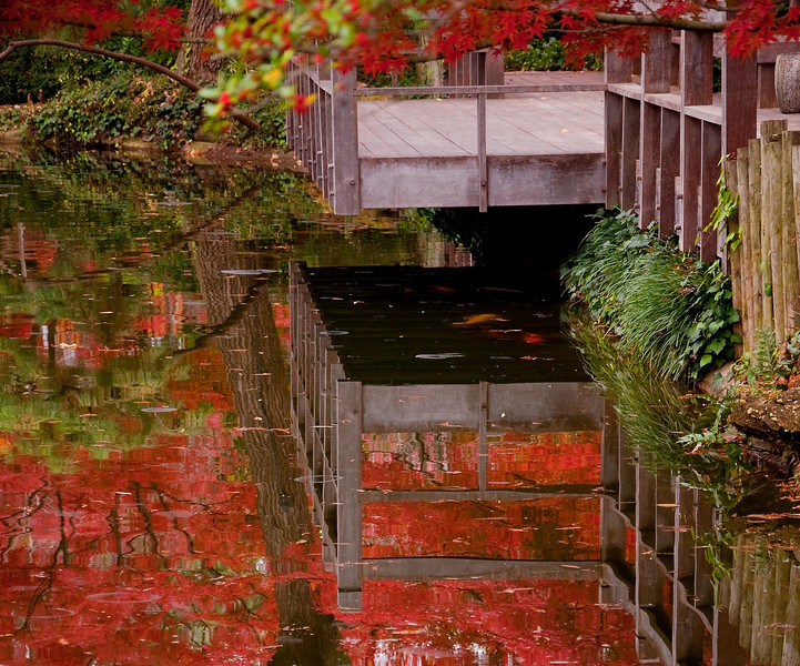 The Koi are not reflections :)