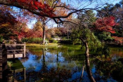 Autumn Peaceful
