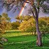 """""""Double Rainbow"""""""