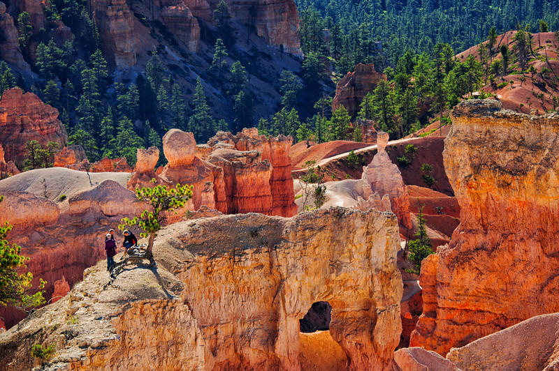"""October 3, 2011 - """"Braver Than Me"""" or """"Foolishness""""<br /> <br /> These people were well to the right of the tree before I managed to get a photograph.  This was shot at Bryce Canyon National Park a little over one week ago."""