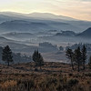 """""""Majestic Yellowstone Morning """"<br /> <br /> This two stitch image was shot our first full morning in Yellowstone.  The mountain splendor was highlighted in the early morning light.  Yellowstone is not a place for sleeping in!  We were on the road at 730am each morning we were in the park."""