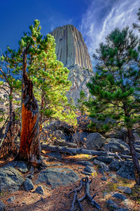 Devils Tower Autumn