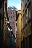 Guinigi Tower - Lucca, Italy