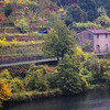 "December 2, 2010 - ""Autunno in Toscana""<br /> <br /> This weeks series view from the ""Devils Bridge"" to the bank across the river from yesterdays image.<br /> <br /> We only spent about 20 minutes photographing around the bridge because of the heavy rain."