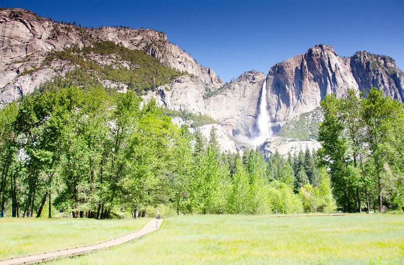 Meadows in Yosemite Valley with falls