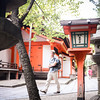 I'm checking out down town temple in Kyoto