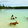 Kanumera Bay on Isle of Pines complete with local children and some aquatic dogs
