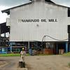 Palm oil mill