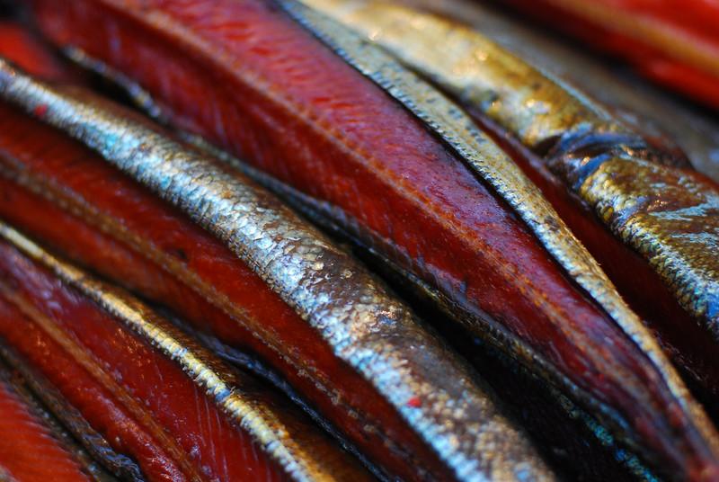 Tasty smoked salmon