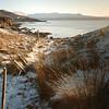 Stroll on Xmas morning along a frozen shore...