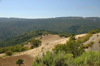 Hwy299, California