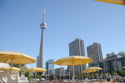 CN Tower from the Harbour