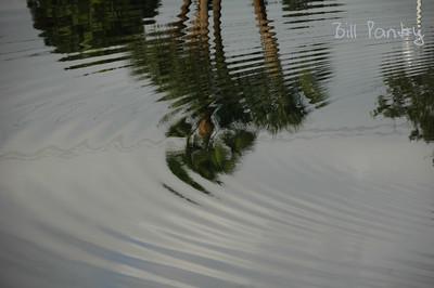 2007_12_0050