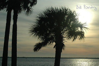2006_11_0043