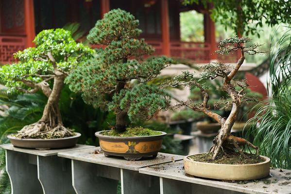 Fuzhou 03