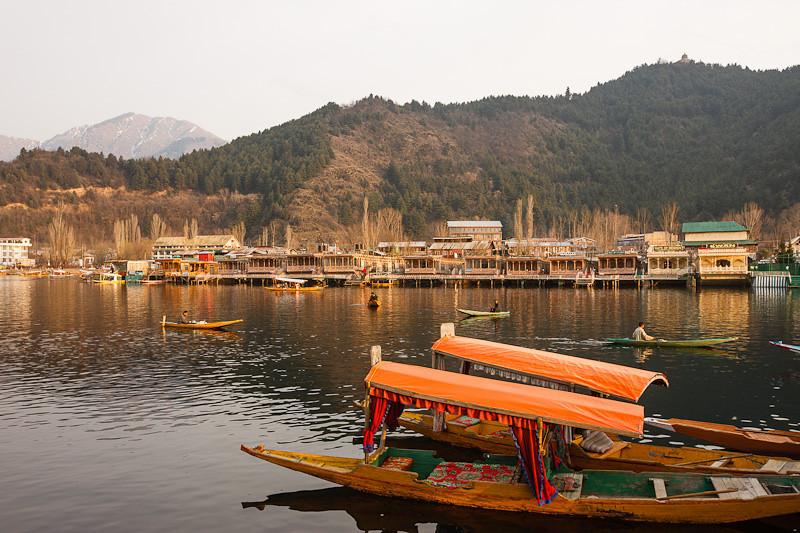 Kashmir 12