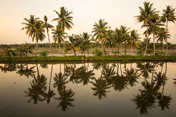 Kerala 14