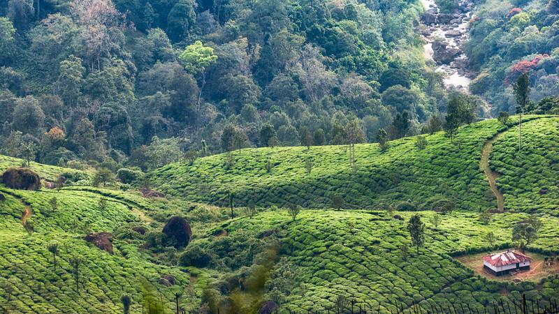 Kerala 23