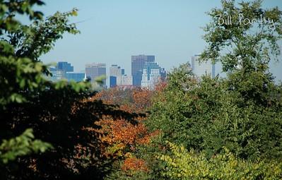 Boston skyline from Arnold Arboretum, in Jamaica Plain, Massachusetts
