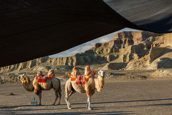 Xinjiang Places 030
