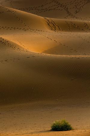 Xinjiang Places 008