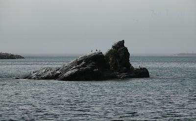 along the Oregon Coast Hwy
