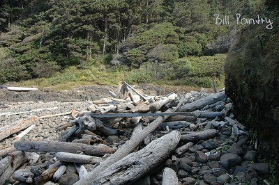 Cape Cove, Devils Churn, Oregon Coast Hwy