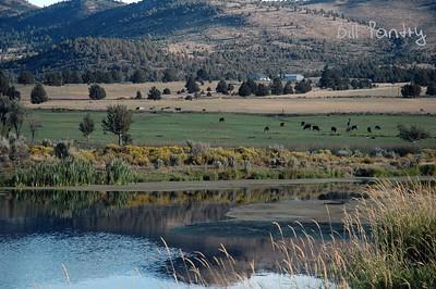 Hwy 140, Lakeview to Klamath Falls, Oregon