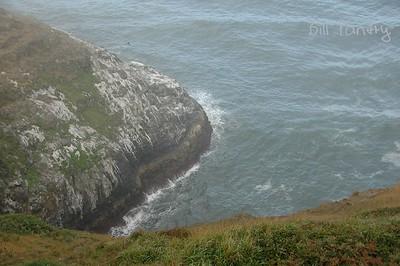 Sea Lion Point, Oregon Coast Hwy