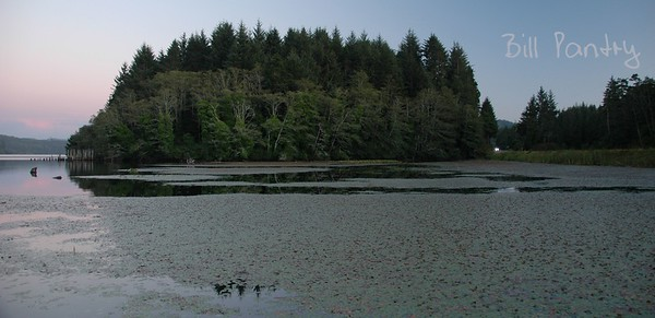 from Public Dock on Tahkenitch Lake
