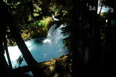 Willamette National Forest, McKenzie River