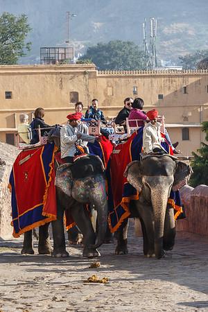 Jaipur 18