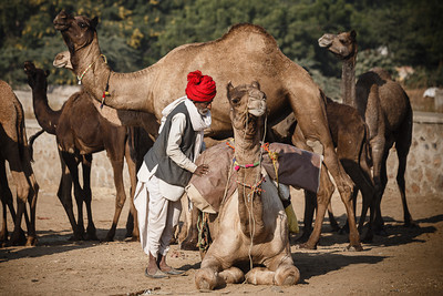 Pushkar 09