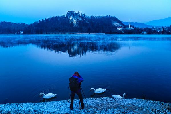 Slovenia 24