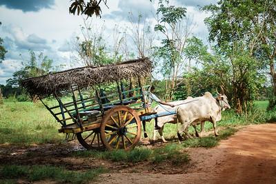 Sri Lanka 21