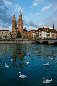 Zurich 08
