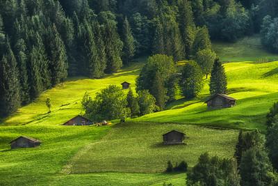 Grindelwald 08