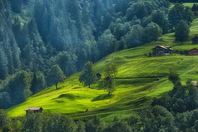 Grindelwald 09