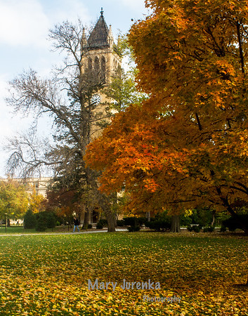 Iowa State Campanile in Fall