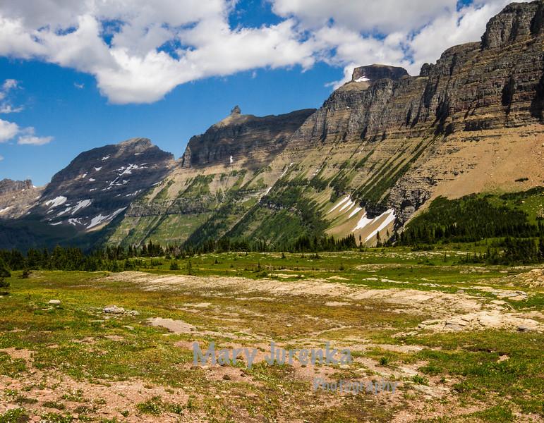 Glacier National Park July 2013.  This was taken near Logan Pass.