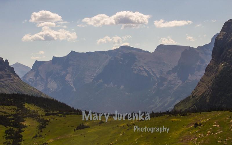 near Logan Pass at Glacier National Park